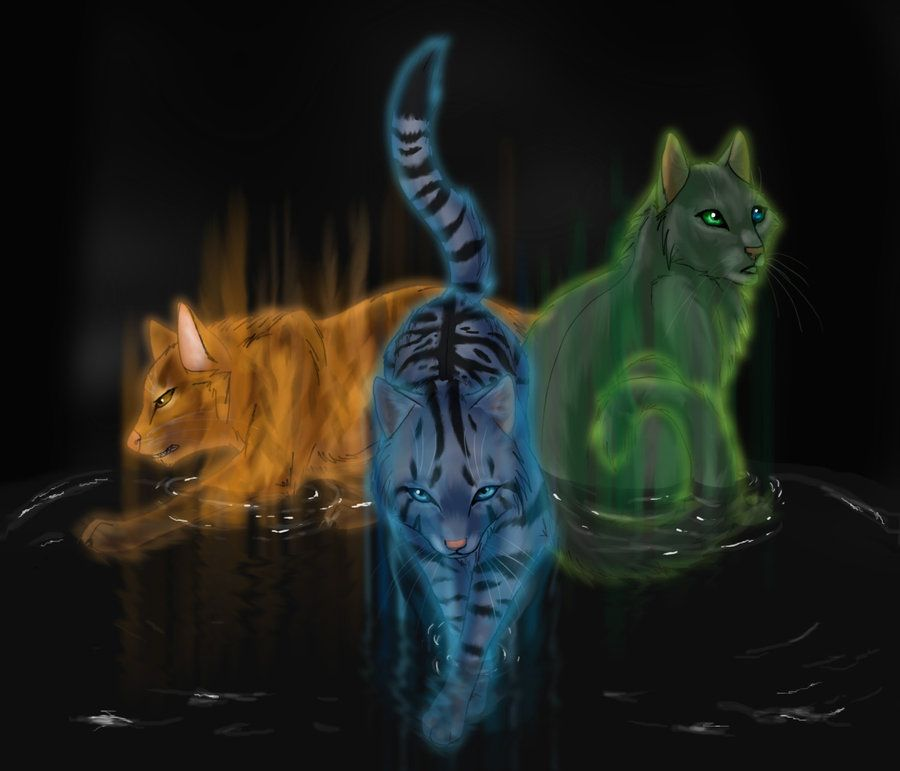 Lionblaze Jayfeather Hollyleaf With Images Warrior Cat Memes