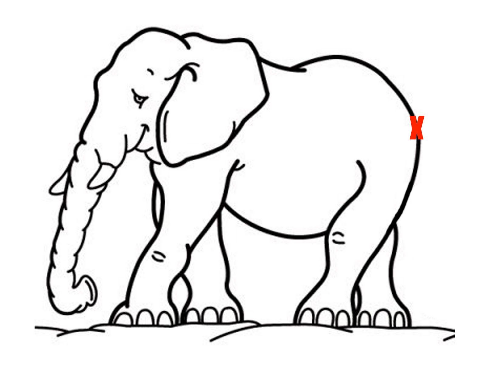 Pin The Tail On The Elephant Animales Salvajes Para Colorear