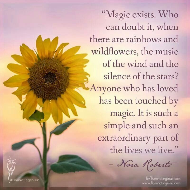Magic Exists Sunflower Quotes Life Quotes Pictures Flower Quotes