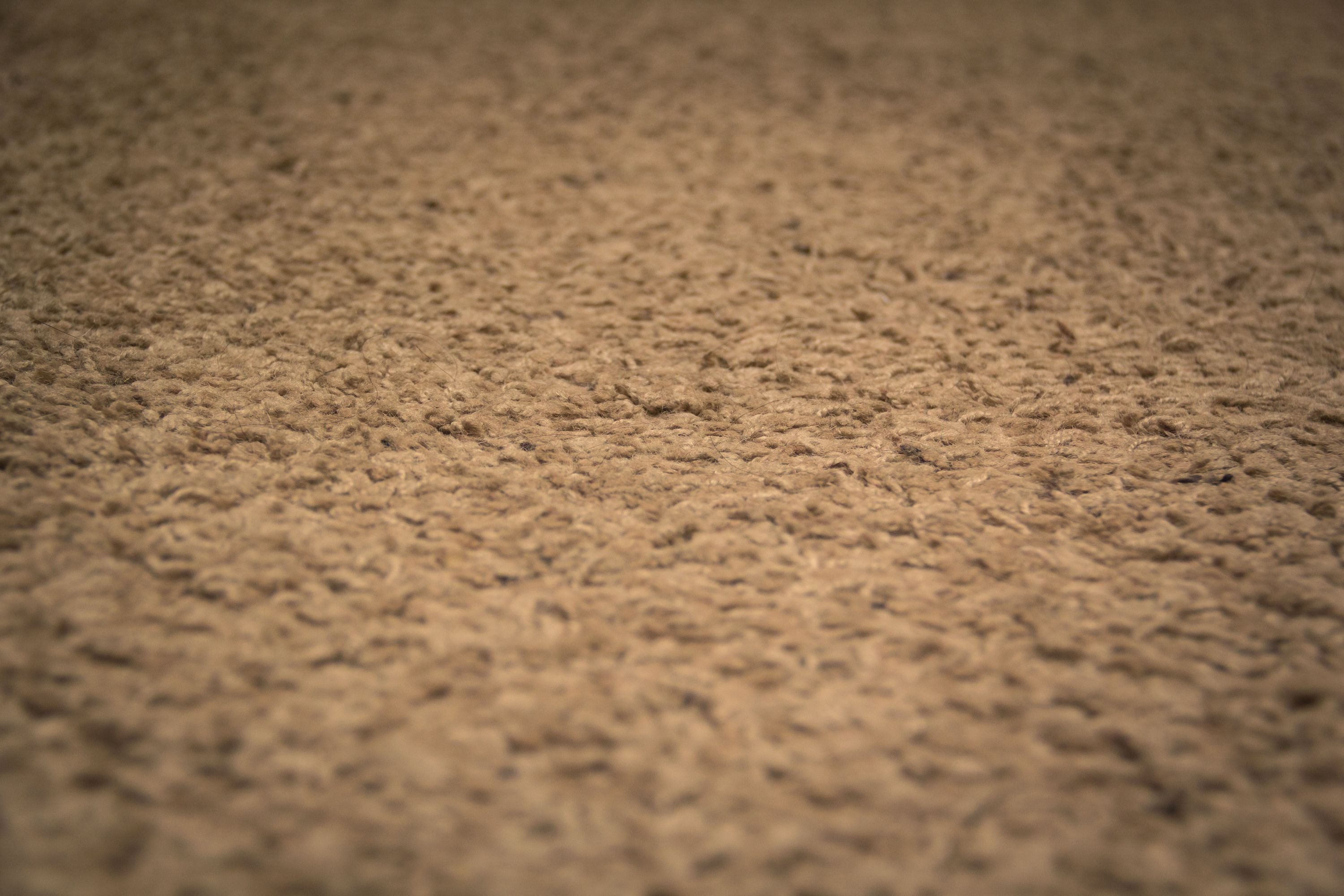 How to Get Makeup Stains Out of Carpet How to clean