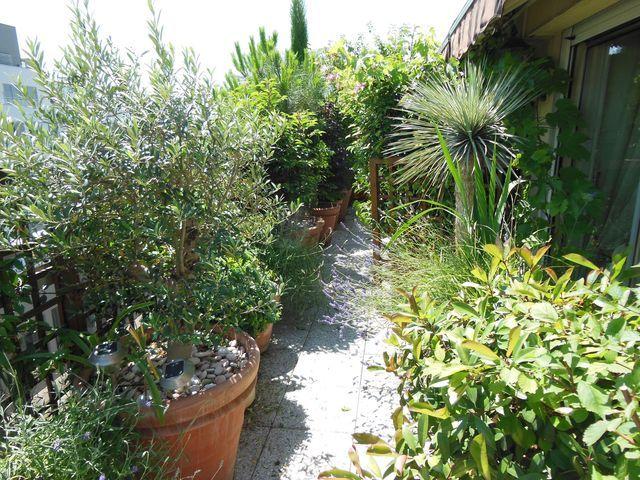 Terrasse Et Balcon A Paris 7 Exemples D Amenagements Avant Apres Jardin D Appartement Jardinage Urbain Jardin Avec Terrasse