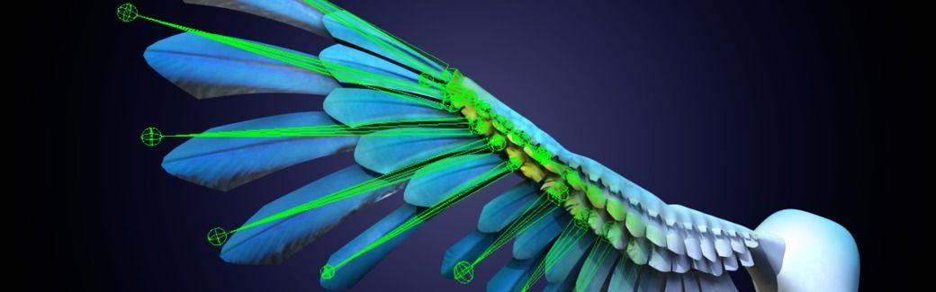 Digital-Tutors Maya Tutorials Rigging Wings in Maya Tutorial