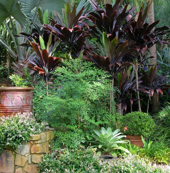 Nevell Garden Coffs Harbour Garden Expressions In 2020 Tropical Garden Design Tropical Backyard Landscaping Garden Design