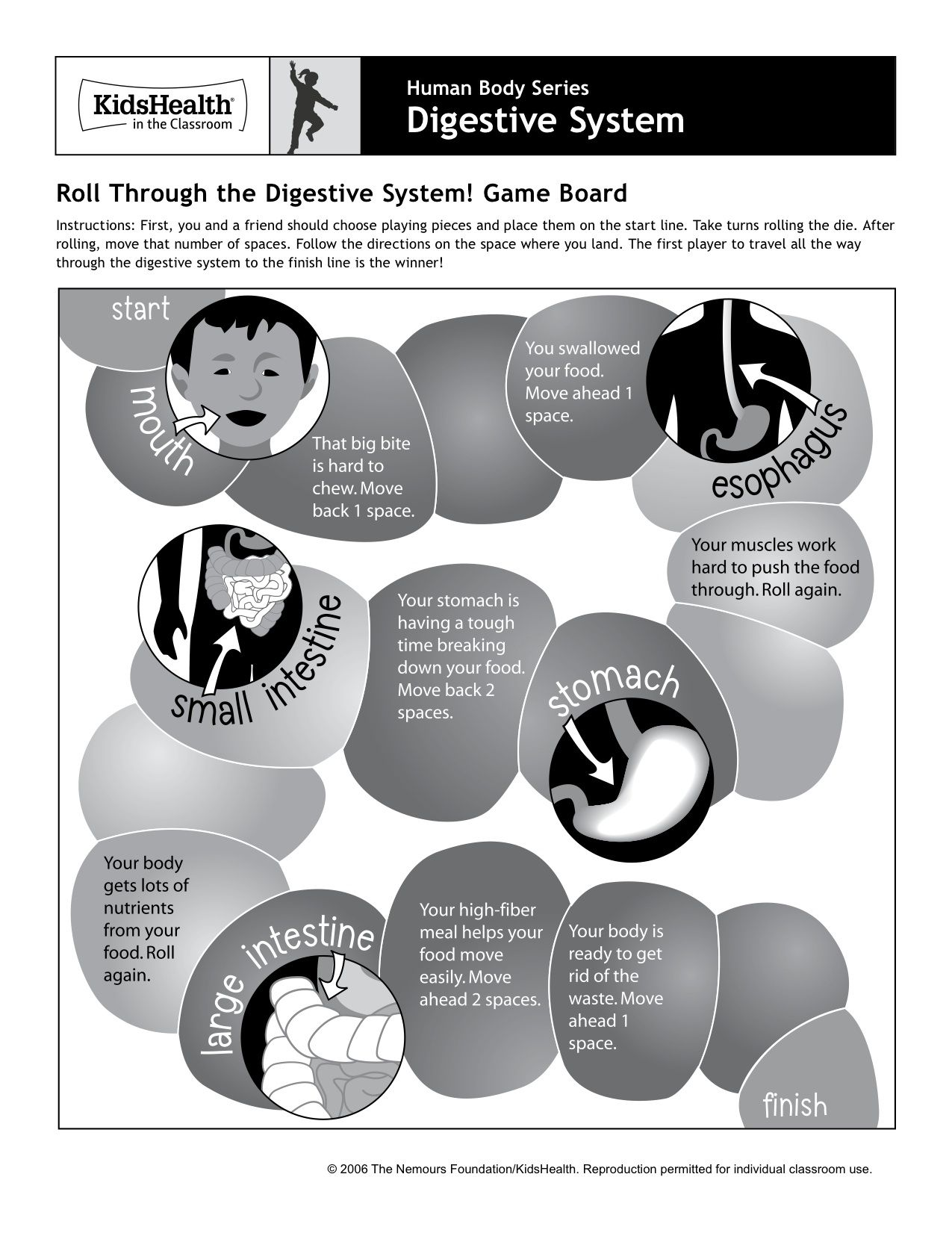 hight resolution of digestive system dice game   Digestive system activities