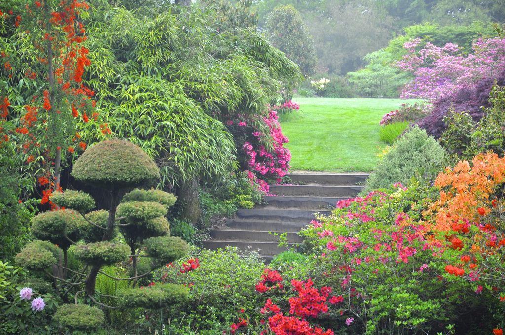 Parc Botanique De Haute Bretagne Photo Jardin Botanique Et Parc