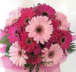 What Is The Average Cost For Wedding Flowers Weddingbee Wedding Bouquets Pink Gerbera Daisy Wedding Gerbera Daisy Bouquet