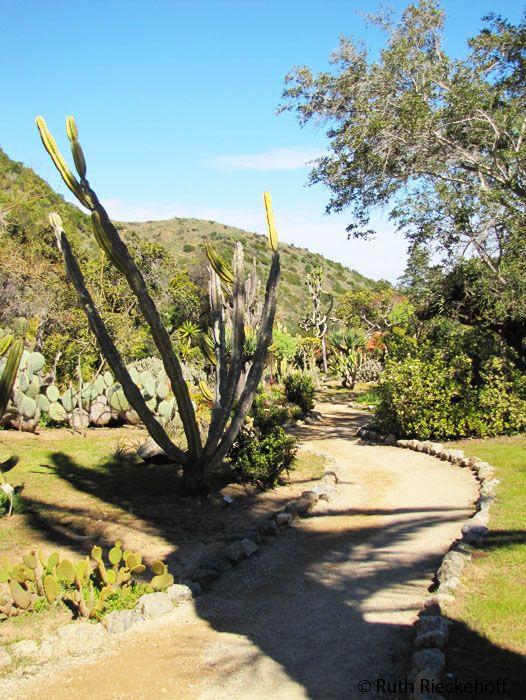 A Magic Garden And A Hidden Castle In Catalina Island Catalina