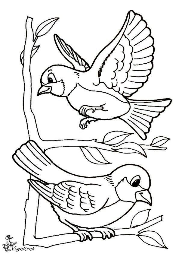 Gratis Kleurplaten Vogels.Twee Vogeltjes Embroidery Kleurplaten Vogels Tekenen En