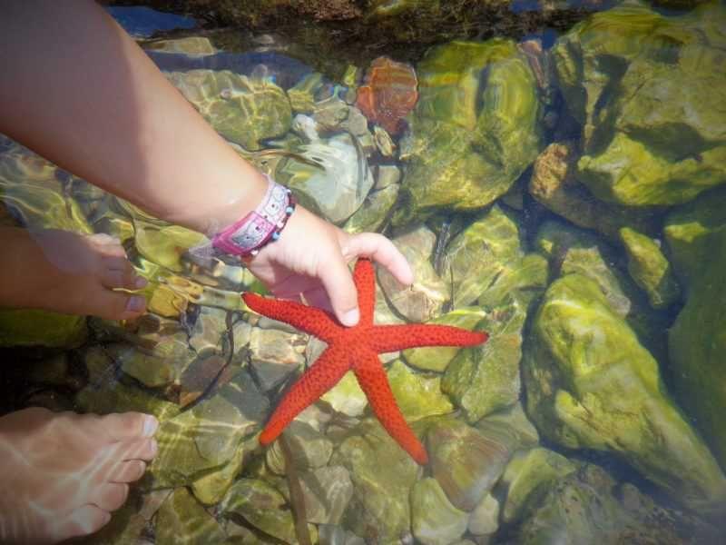 Menorca: la reina del mediterráneo!