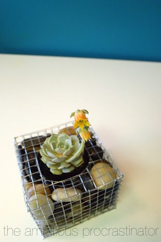 Instructions To Diy Your Own Gabion Planter Planters 400 x 300