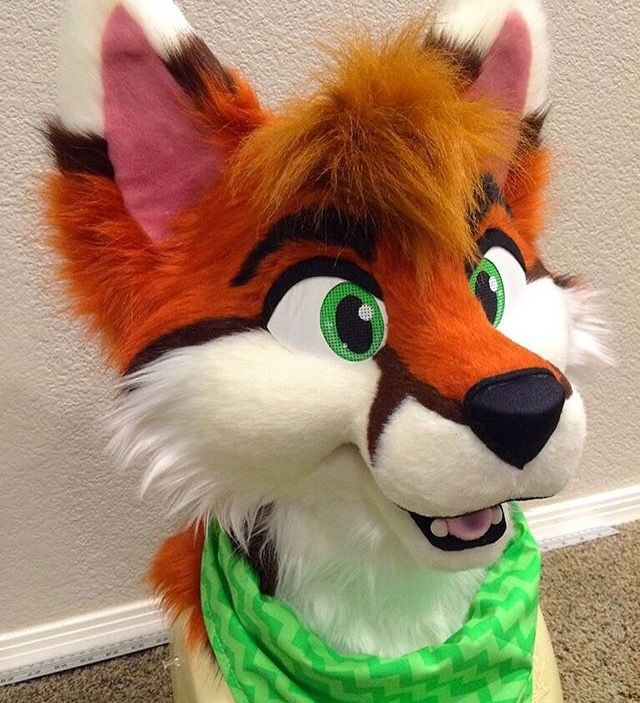 Don't hug cacti fursuit wolf fox