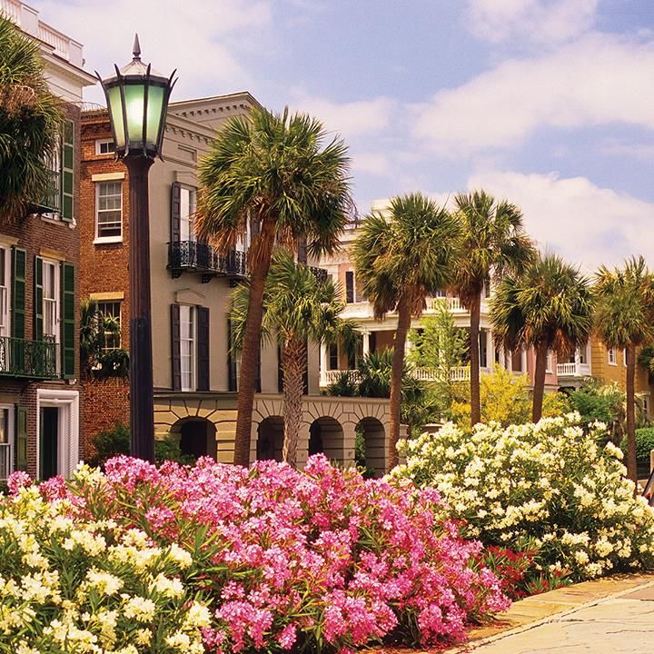 Charleston Sc Homes: Spring To Charleston, Voted The Top City In The US And