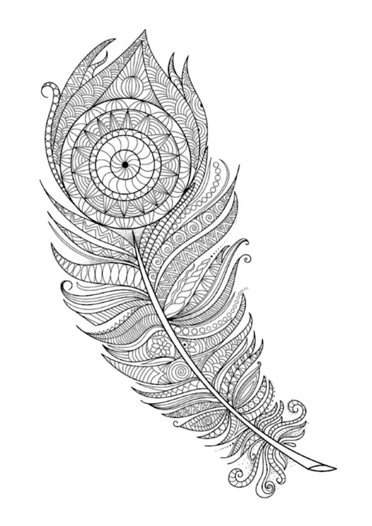 feathers coloring page 7 by artist anna witton adult