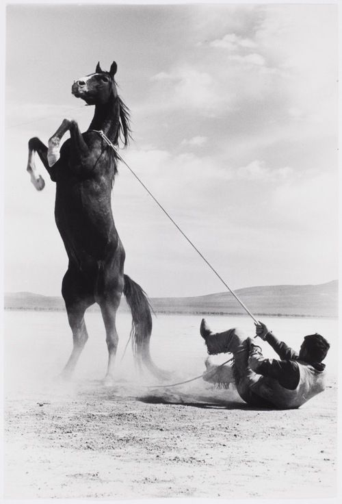 Photo by Ernst Haas. Stuntman with Mustang on the set of The Misfits, 1960