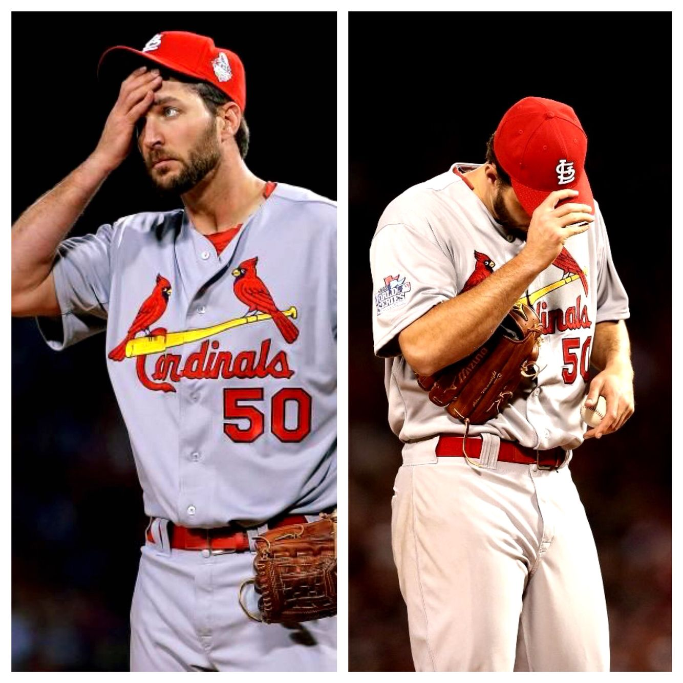 Losing Waino For The The Reminder Of 2015 Has All Cards Fans Looking Like This Achilles Tear With Images St Louis Cardinals Baseball St Louis Cardinals Cardinals Baseball