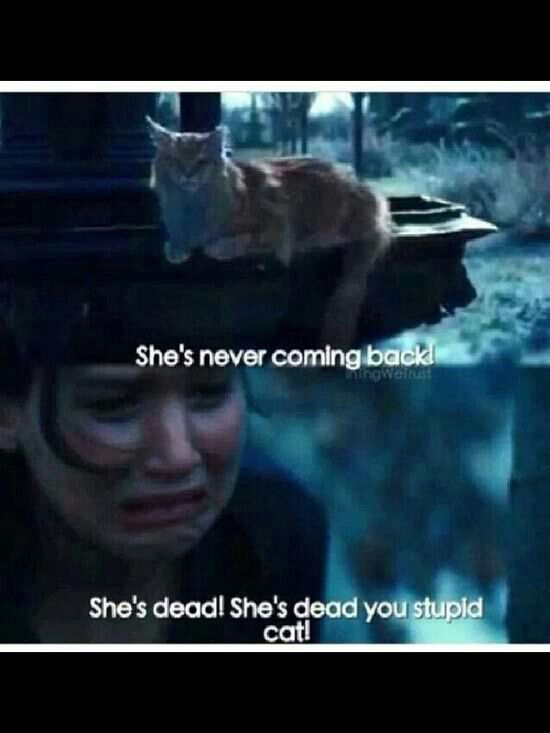 Mockingjay. Not emotionally prepared for this scene. R.I.P. Primrose Everdeen. We love you!!