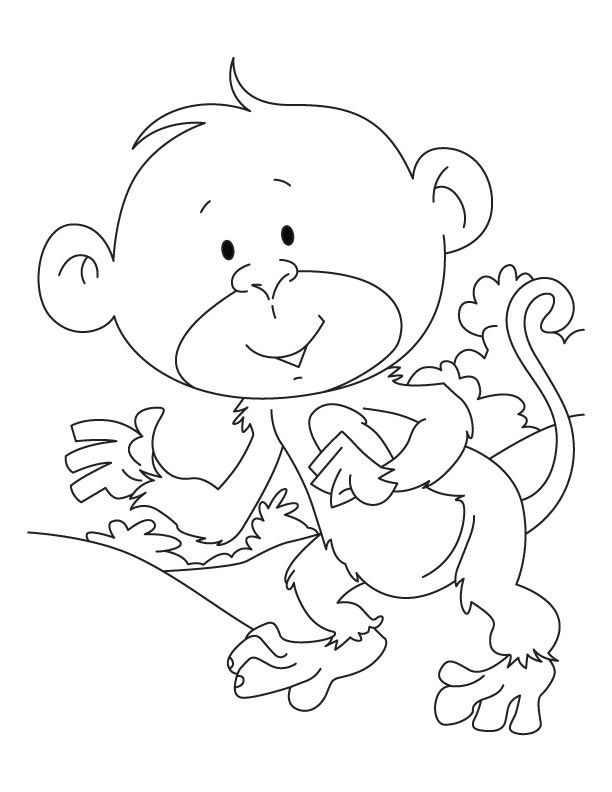 Baby ape coloring pages Download Free Baby ape coloring pages for - best of coloring pages to print animals