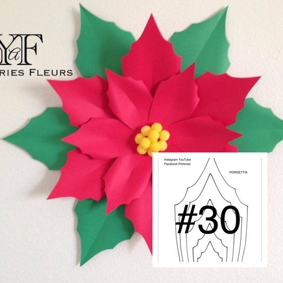 Large Poinsettia Paper Flower Template Gardening Flower And