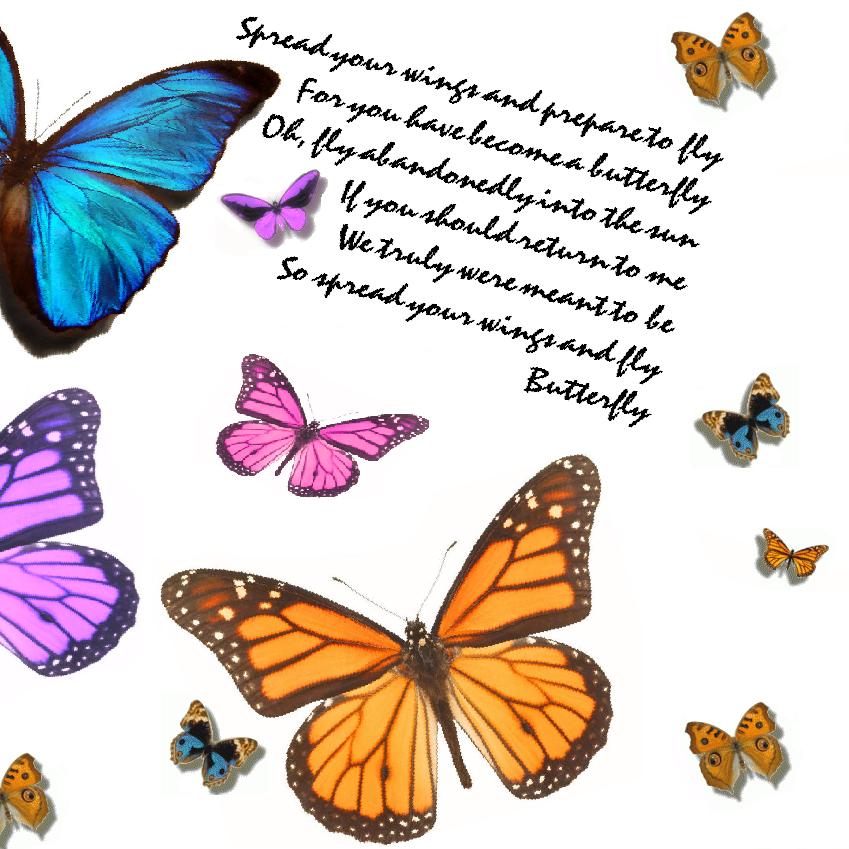 Butterflies Mariah Carey Lyrics Graphics Code Butterflies Mariah Carey Lyrics Comments Pictures Mariah Carey Mariah Carey Butterfly Mariah Carey Lyrics