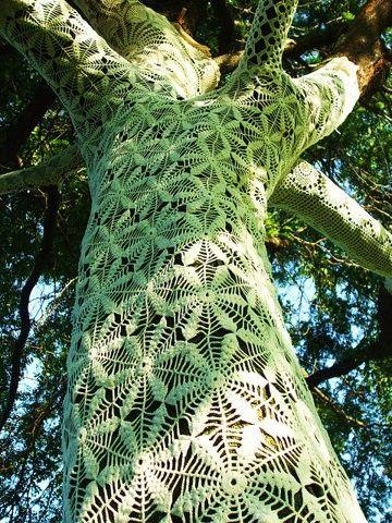 Crochet covered tree! Caitlin Shearer