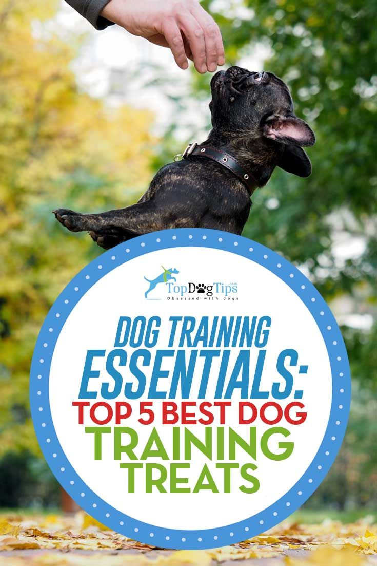 Top 5 Best Dog Training Treats Best Dog Treats Dog Training