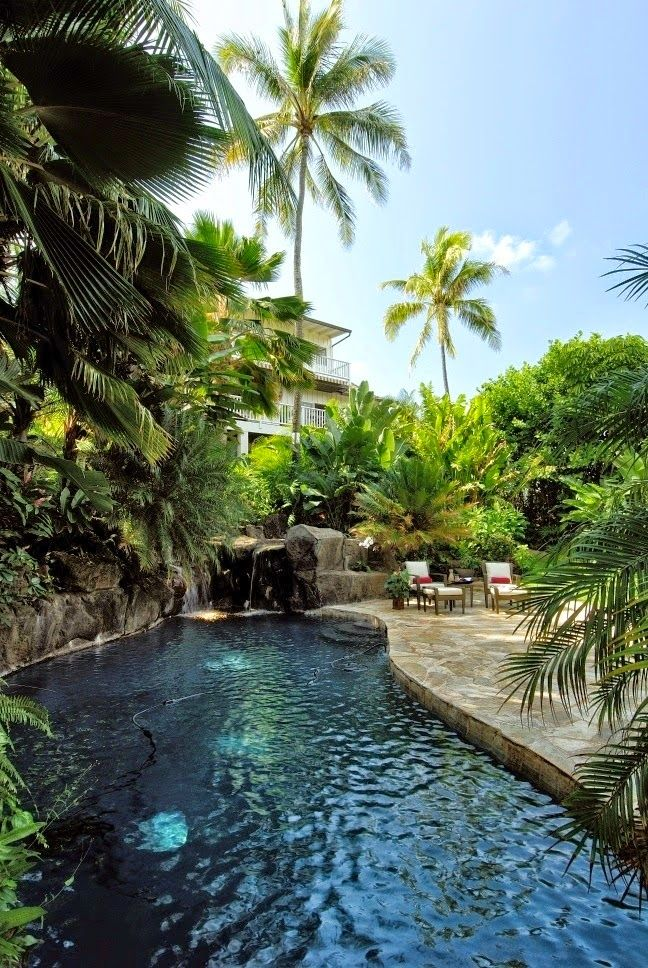 Loved the dark pool and landscaping swimming pools for Tropical pool gardens