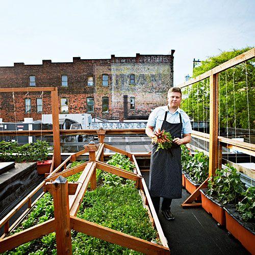 Roof Top Garden Terrace Garden Kitchen Garden Vegetable: Bastille Café & Bar
