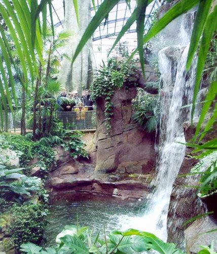 Die Schonsten Tropenhauser In Deutschland Botanischer Garten Berlin Ausflug Botanischer Garten
