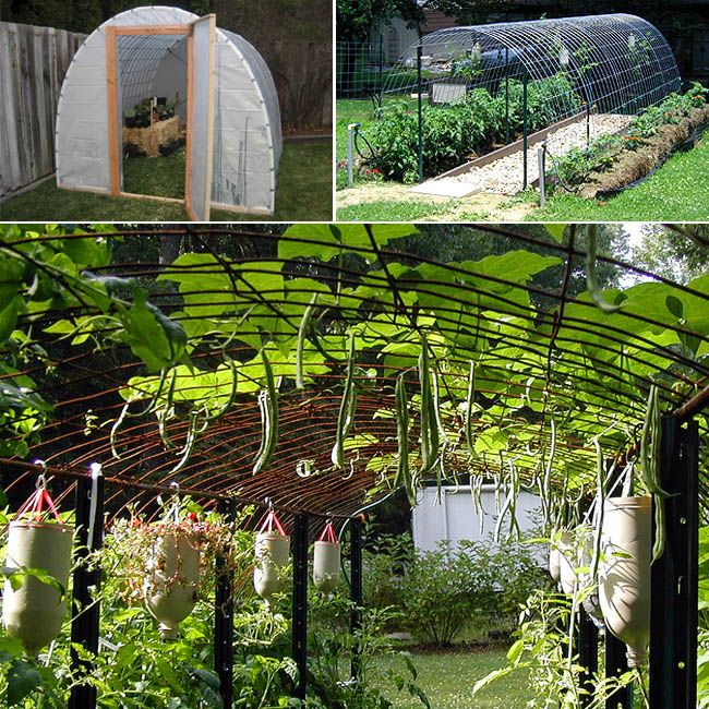 21 diy greenhouses with great tutorials diy greenhouse for Greenhouse designs for residential use
