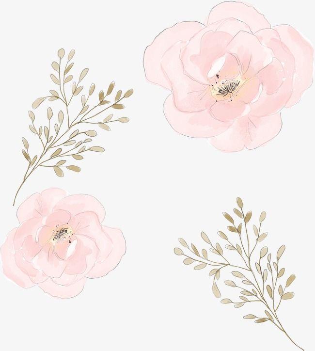 Watercolor Flowers Watercolor Clipart Pink Watercolor Png