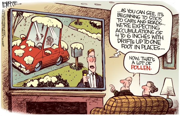 Image result for pollen cartoons