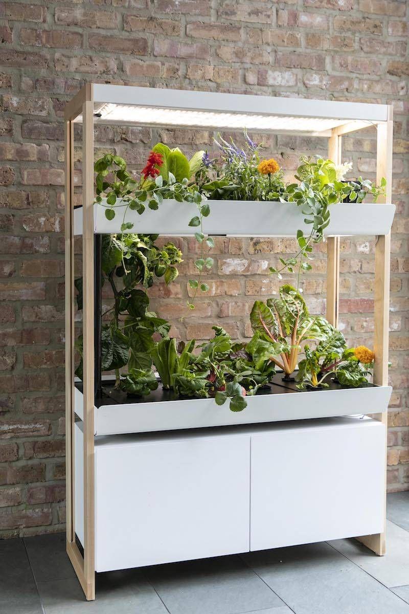 Indoor Garden With Images Indoor Garden Smart Garden 400 x 300