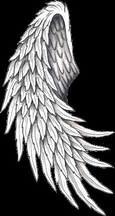 Image D Ange Homme tatouage aile d ange dos 147848495242 | tattoo ideas | pinterest