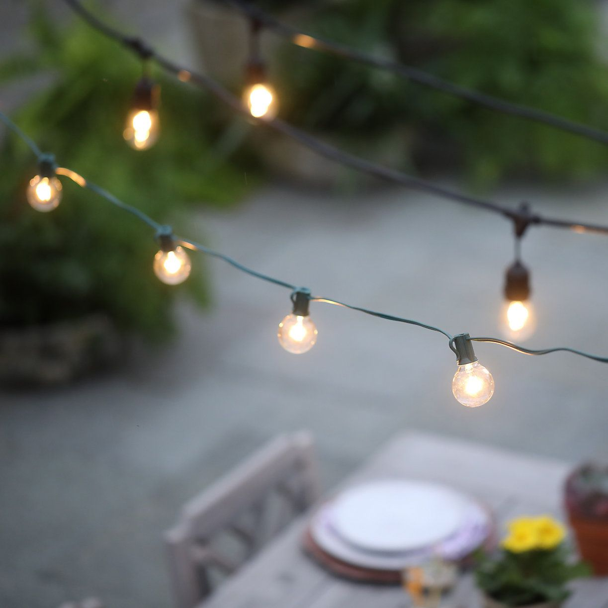 String Globe Lights Endearing Stargazer Commercial Light String  Globe Lights Lights And Backyard Inspiration