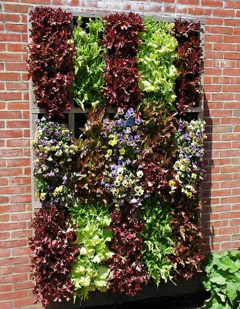 http://www.goverhorticulture.com/vertical-garden.html | Vertical ...