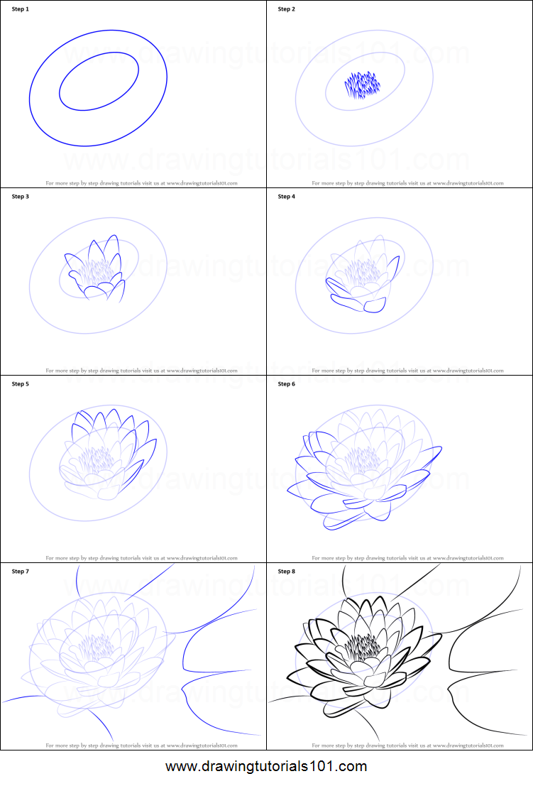 graphic relating to Printable Draw named How towards Attract Lily Pad Printable Drawing Sheet as a result of