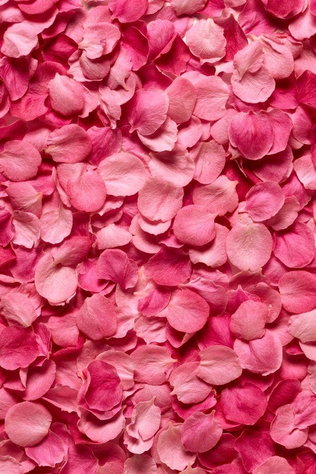 花の壁紙 Iphone壁紙ギャラリー ピンク 壁紙 Iphone 壁紙