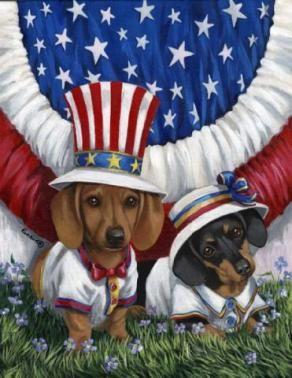 Patriotic Dachshund Flag Dachshund Rescue Of North America