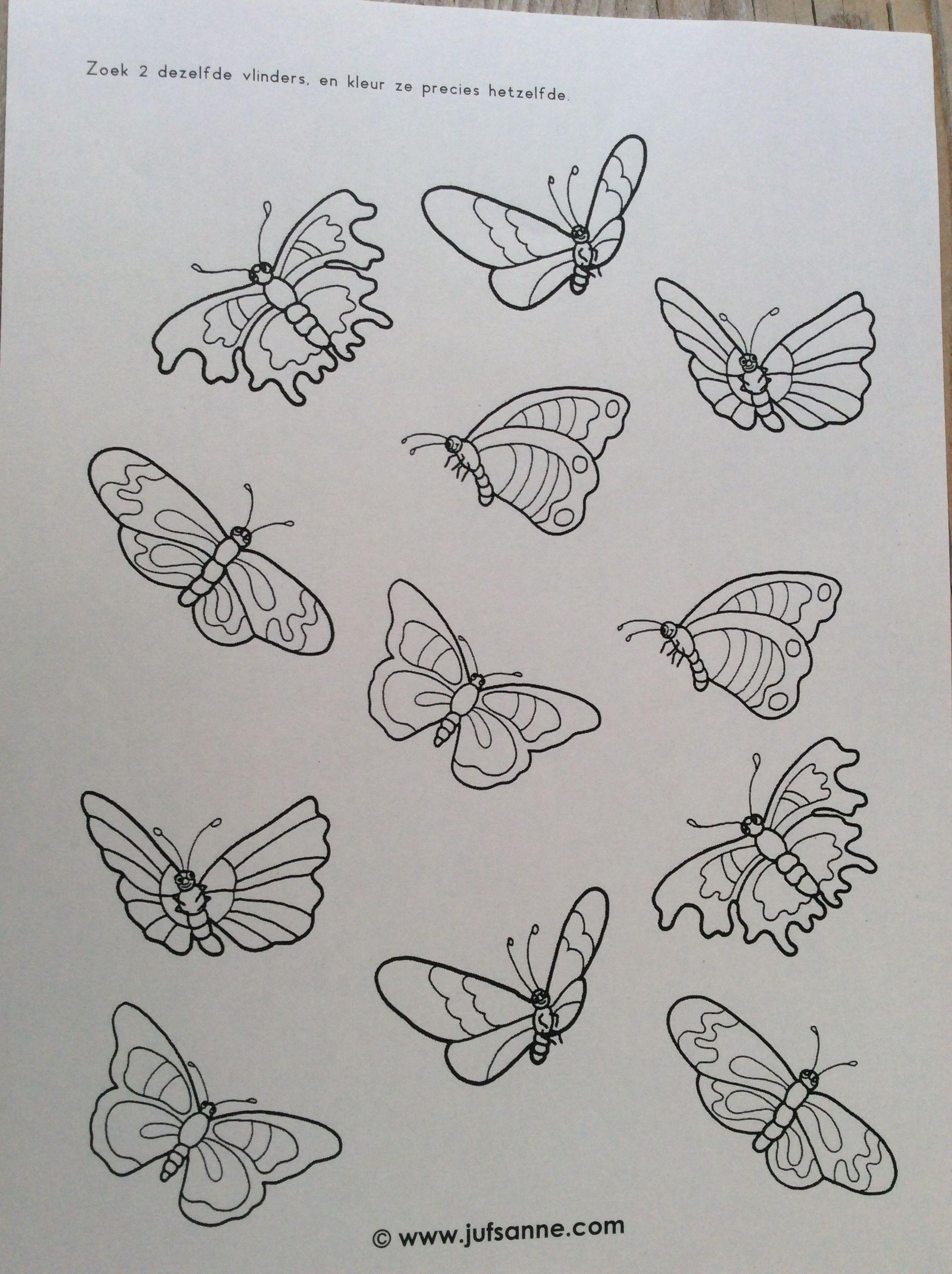 Pin Van Juf Alice Op Lente Vlinders Insecten Thema