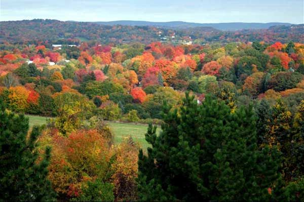 Photos Of Tarrywile Park New England Foliage Get Outdoors New England Fall