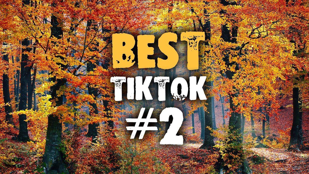 The Best Dance Of Tik Tok 2 September 2020 Best Dance Best Dance
