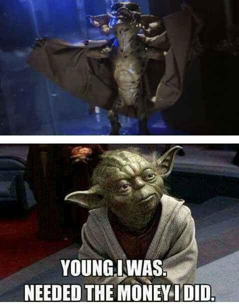 17 Tumblr Posts About Yoda Guaranteed To Make You Laugh Funny Star Wars Memes Star Wars Humor Star Wars Memes