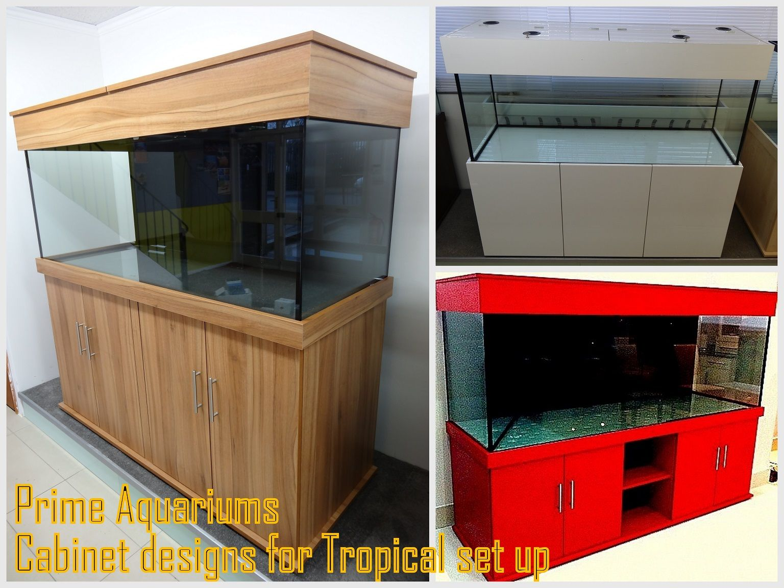 Cabinet aquarium fish tank tropical - Cabinet Designs For Tropical Setup From Prime Aquariums Your Fish Tank Manufacturer
