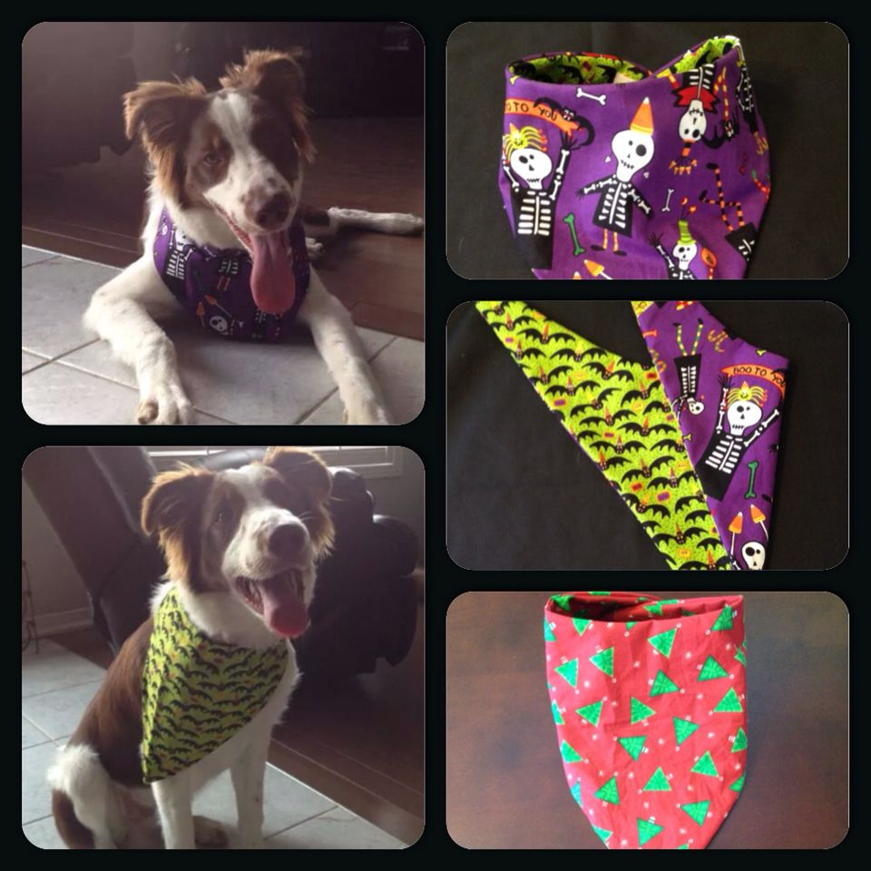 Custom Dog Bandanas To Go With Any Holiday Or Theme Dog Bandana Custom Dog Animals