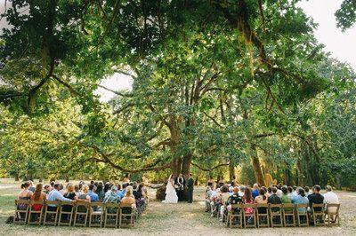 Waste Free Weddings Eugeneweekly Com Wedding Venues Oregon Mount Pisgah Free Wedding Venues