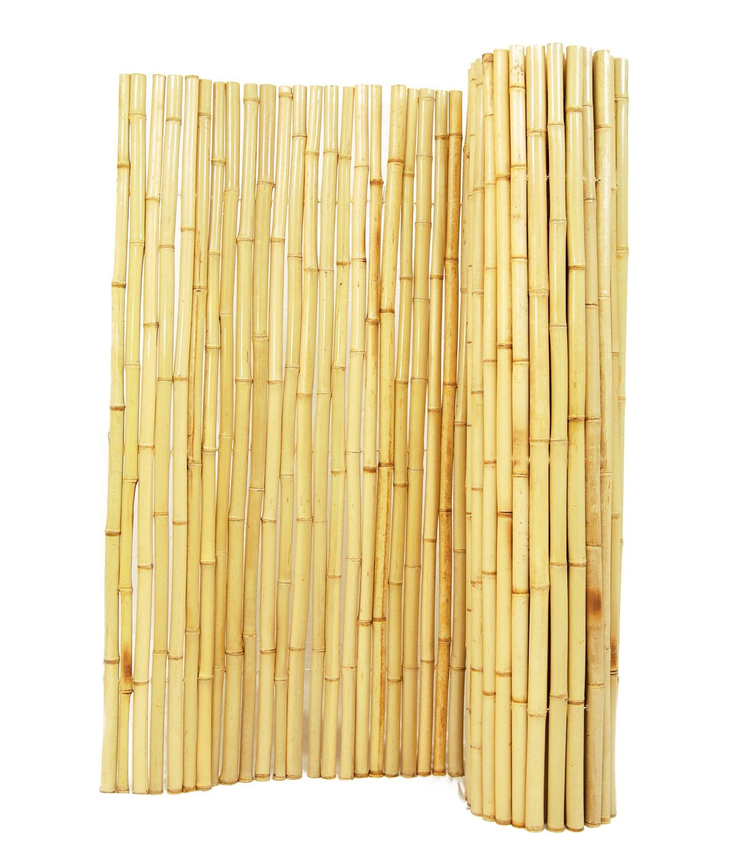 Natural Bamboo Fence 1 D X 8 H X 8 L Bamboo Fence Bamboo