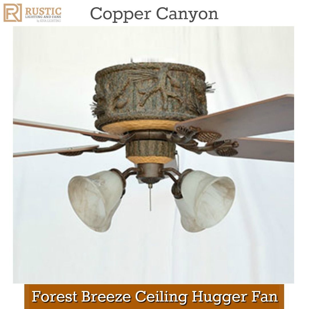 lighting with fan light hugger fans small ceiling jesse photo r ceilings lights