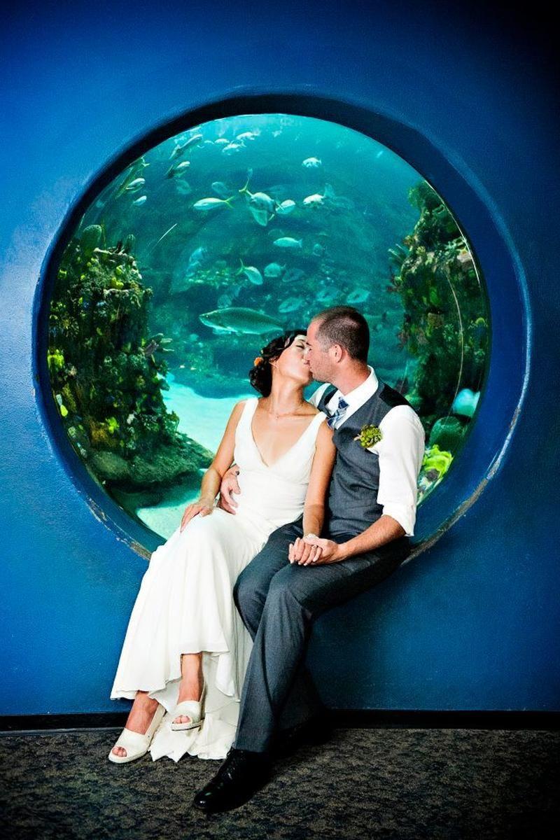 North Carolina Aquarium Of Fort Fisher