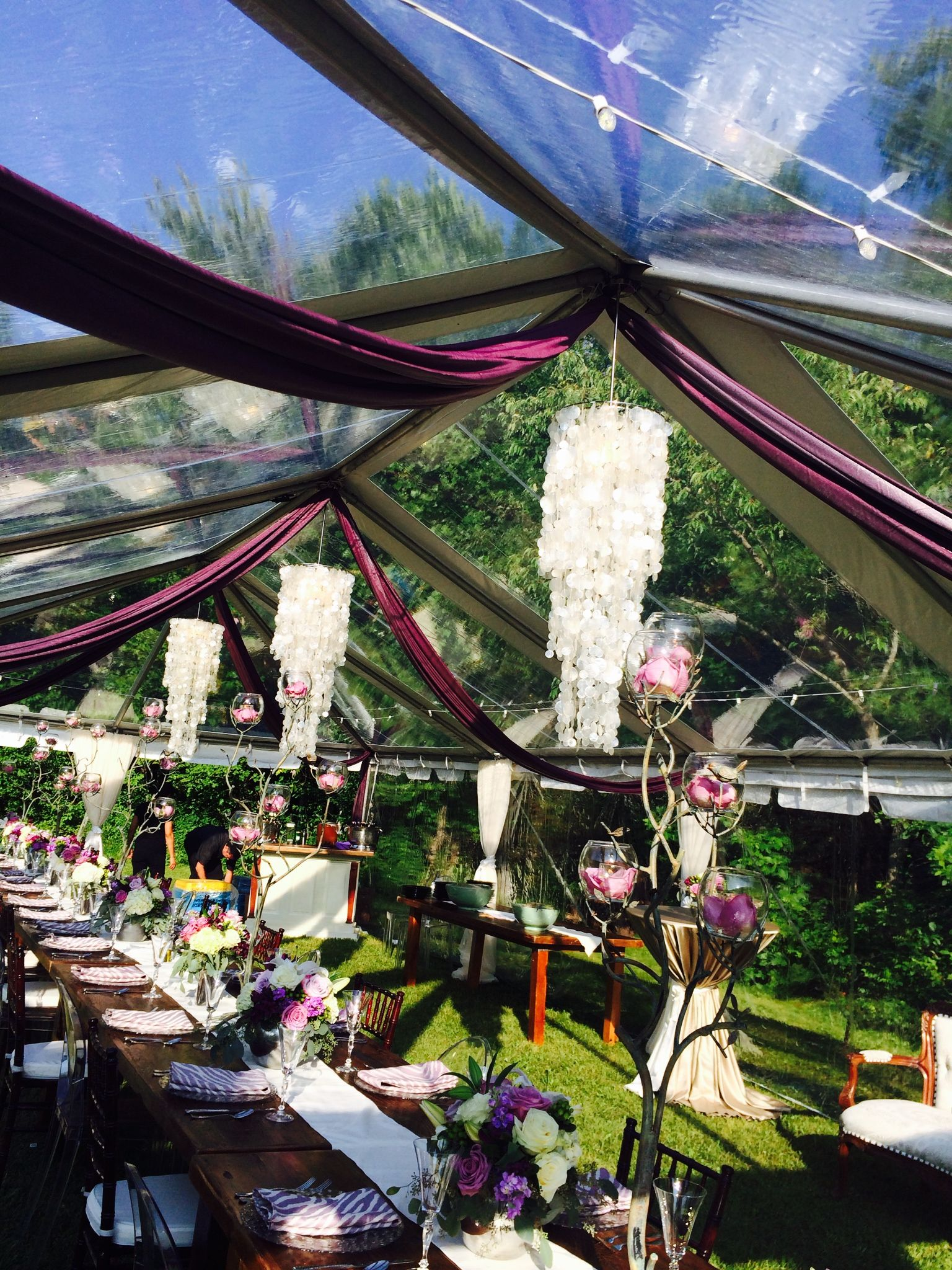 Clear span tent purple draping shell chandeliers farm
