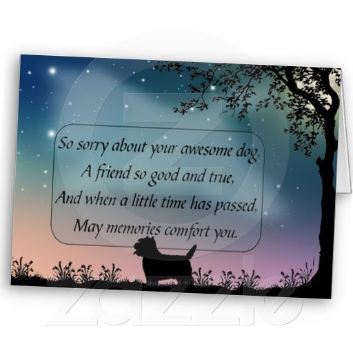Sympathy Dog Quotes: Dog Sympathy Card For West Highland Terrier